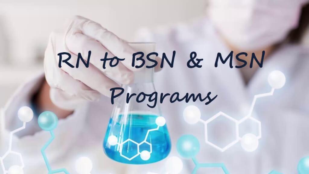 RN to MSN Program